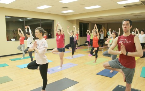 Yogis stretch and pose for serenity