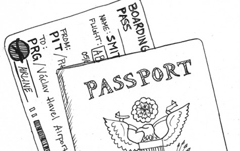 Programs abroad are flourishing