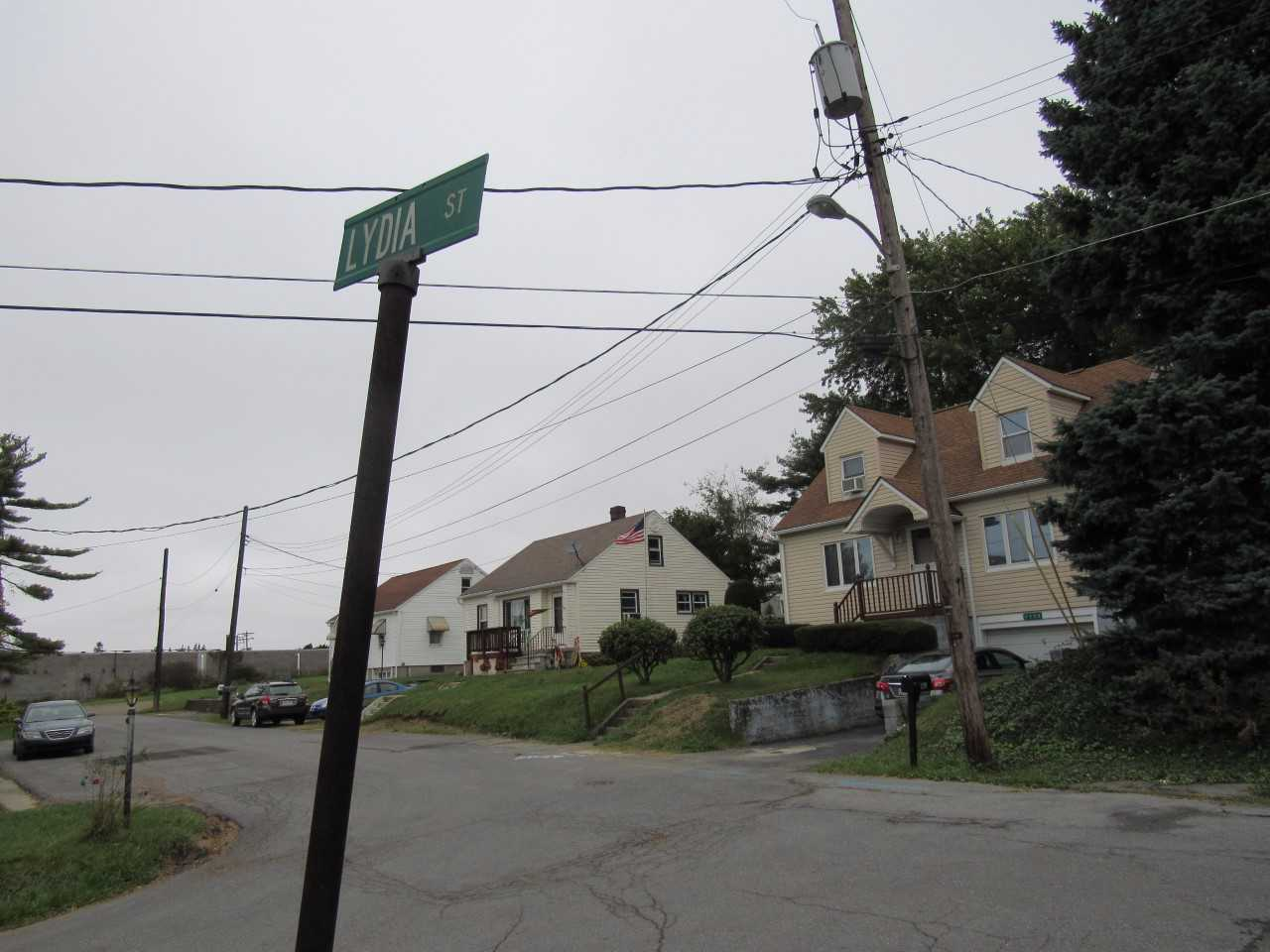 Lydia Street, where a 2013 unsolved homicide occurred, is located in Richland Township.