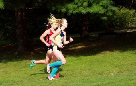 Cross country runner finishes seventh