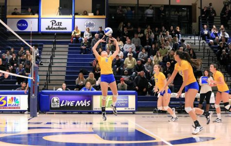 Volleyball's majority are freshmen