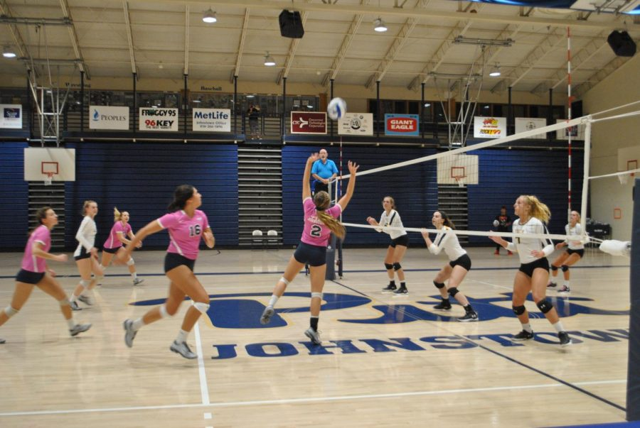 Sophomore+volleyball+player+J.C.+Longeville+%28No.+2%2C+center%29+sets+the+ball+against+Shippensburg+University+on+Friday+at+the+Sports+Center.+Pitt-Johnstown+ended+up+winning+the+game%2C+3-0.+With+the+victory+and+a+loss+on+Saturday%2C+the+Mountain+Cats+have+won+six+of+their+last+nine+games%2C+and+are+10-10+so+far+this+season.+