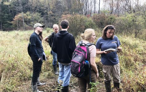 Students finding wetlands' borders