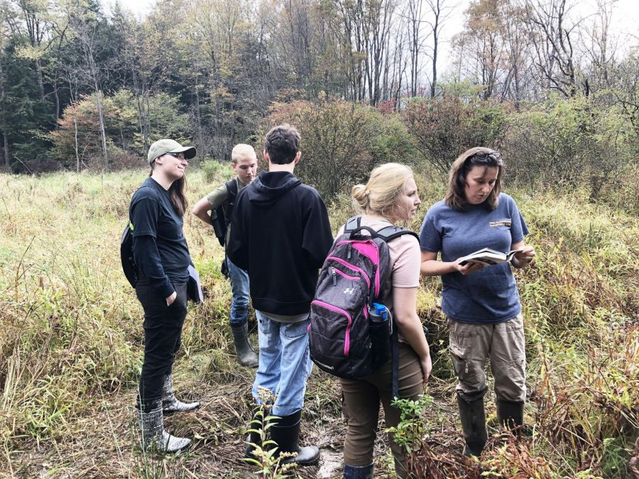 Students+work+with+geography+professor+Mitzy+Schaney+%28right%29+to+identify+vegetation+Oct.+4.