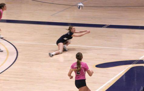 Volleyball clinches bid in playoffs