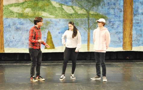 Semester's play is four-plot comedy